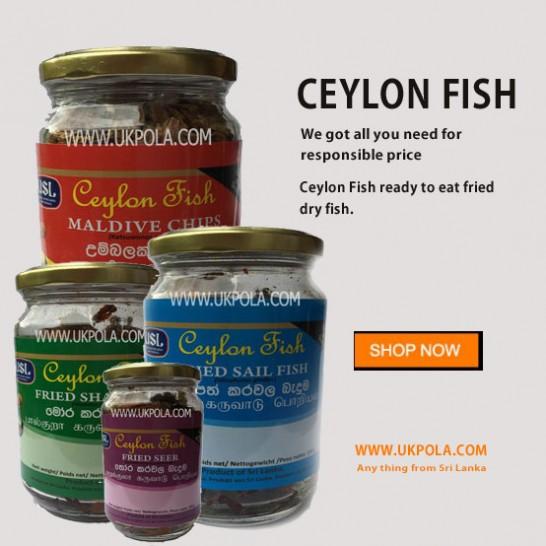 Ceylon Fish